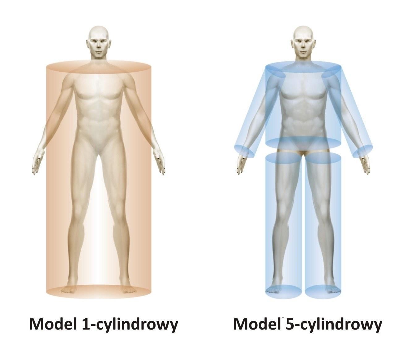 Twoje Ciało i Ty: Przewodnik po segmentalnej analizie ciała